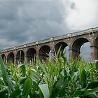 Corn Field Viaduct by Pete Costick
