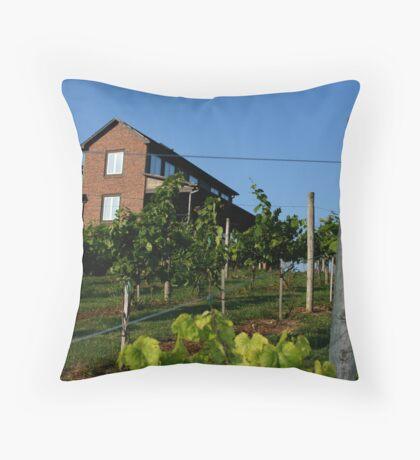 Banner Elk Winery Throw Pillow