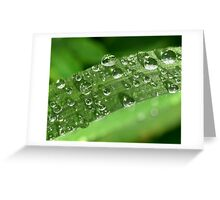 Raindrops II Greeting Card