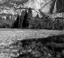 Yosemite Days by Varinia   - Globalphotos