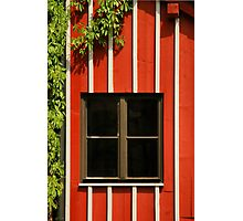 Nuremberg: Castle Windows Photographic Print