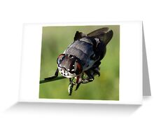 Botfly Greeting Card