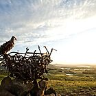 Welcoming the Rising Sun at the National Arboretum in Canberra/ACT/Australia (1) by Wolf Sverak