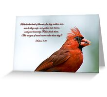 Behold the birds of the air . . . Greeting Card