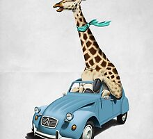 Riding High (Wordless) by robCREATIVE