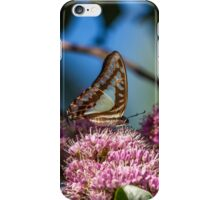 Pale Triangle Butterfly, Wings Closed iPhone Case/Skin