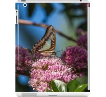 Pale Triangle Butterfly, Wings Closed iPad Case/Skin