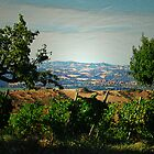 Remembering Fattori II (false painting) by Alessia Ghisi Migliari