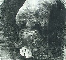 Sam Curled Up by Josh Bowe