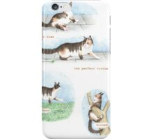 C IS FOR CATS From A Bull Terrier's Alphabet. iPhone Case/Skin