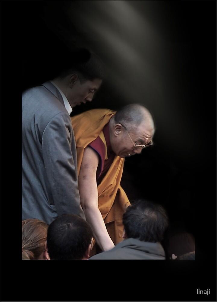 His Holiness The Dali Lama by linaji