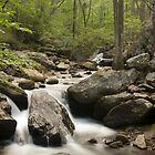 Anna Ruby Falls Creek by James Davidson