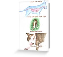 E IS FOR ENERGY From A Bull Terrier's Alphabet. Greeting Card