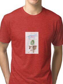 E IS FOR ENERGY From A Bull Terrier's Alphabet. Tri-blend T-Shirt