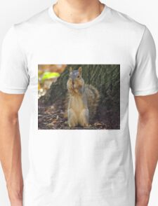 Pittsburgh Squirrel T-Shirt