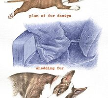 F IS FOR FUR From A Bull Terrier's Alphabet by threebrownhares