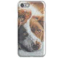 Dog Art - Portrait Painting of a Lovely Dog iPhone Case/Skin