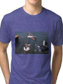 Port Hughes Pelicans Tri-blend T-Shirt
