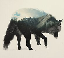 Wolf by andreaslie