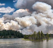 LeHardy Fire, Yellowstone National Park by Bryan Peterson