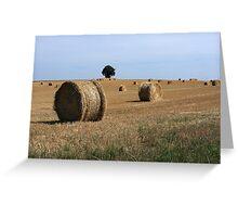 Straw Bale Field Greeting Card