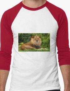 Male Lion at Pittsburgh Zoo Men's Baseball ¾ T-Shirt