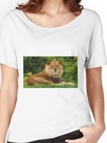 Male Lion at Pittsburgh Zoo Women's Relaxed Fit T-Shirt
