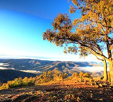 View - Kissing Point - Hill End NSW - The HDR Series by Philip Johnson