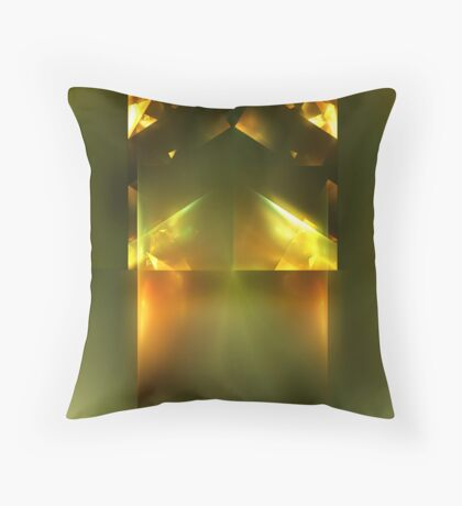 Product of Conception Throw Pillow