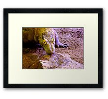 Last of the Dragons Framed Print