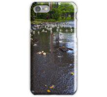 Fallen from the Rain iPhone Case/Skin