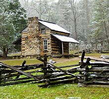 Elijah Oliver Cabin, Great Smoky Mountain National Park by gcamilleri
