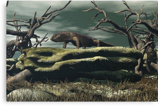 Komoto Dragon by Walter Colvin