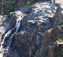 Baron Falls QLD by Fred  Smith