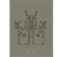 hieroglyphic 2 Photographic Print