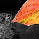 Dark Autumn by Sally Green