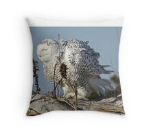 Snowy Owl Shake Throw Pillow