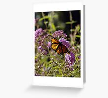 "--'Designs of a Butterfly"" Greeting Card"