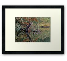 A Couple of Couples (Ducks at Witley)  Framed Print