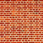 The Wall by aidan  moran