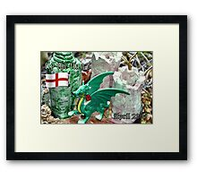 Fly the flag Framed Print