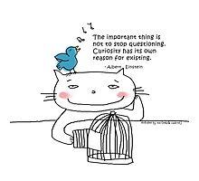 Einstein quote ... Curiosity / Cat doodle Photographic Print