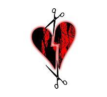a broken heart Photographic Print