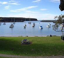 Ulladulla Harbour by Sharon Robertson