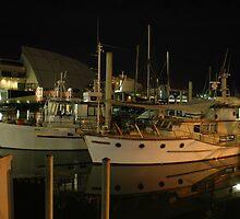 Night light on the water by Steven Maynard