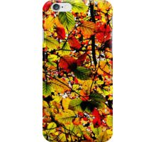 Abstract Autumn iPhone Case/Skin
