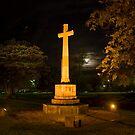 Adelaide by night.jpg by Steven Maynard
