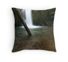 Marriners Falls Throw Pillow