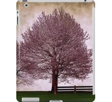 Afternoon in the Park iPad Case/Skin