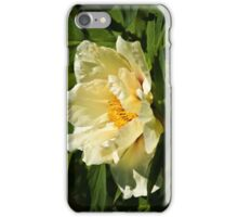 Yellow tree peony  iPhone Case/Skin